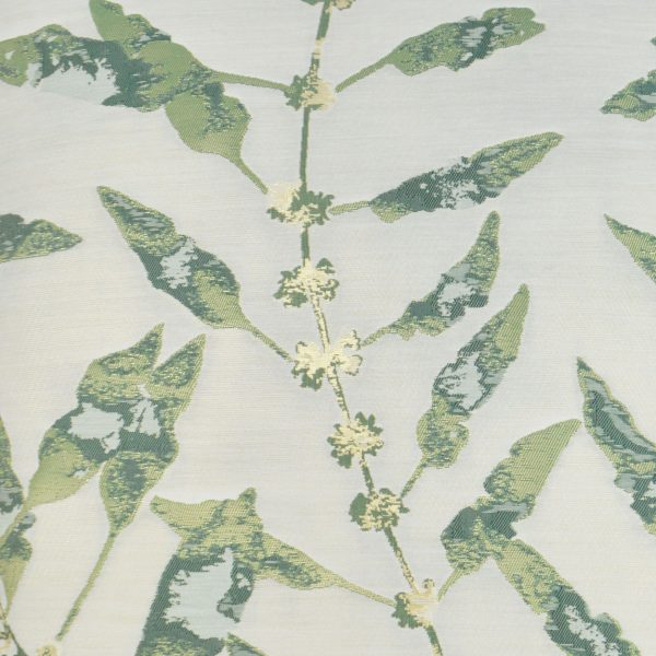 Branches-Basil