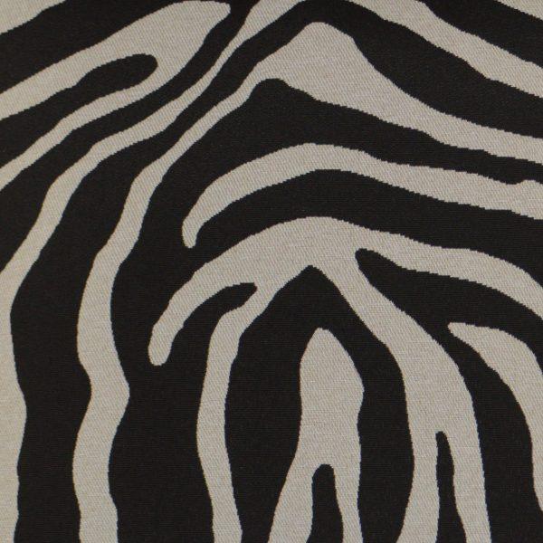 Surf Zebra Lumbar